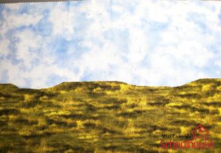 Sky Grass